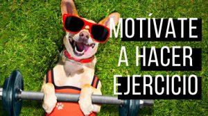 Consejos para motivarte a hacer ejercicio